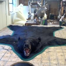 Kevin Metshulat Black Bear Rug