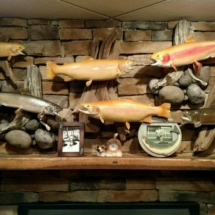 Assorted trout